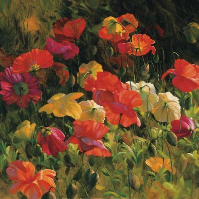Iceland Poppies-Leon Roulette-Art Print