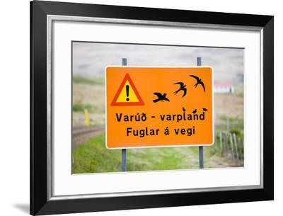 Iceland, Road Sign, Warning 'Low-Flying Birds'-Frank Lukasseck-Framed Photographic Print