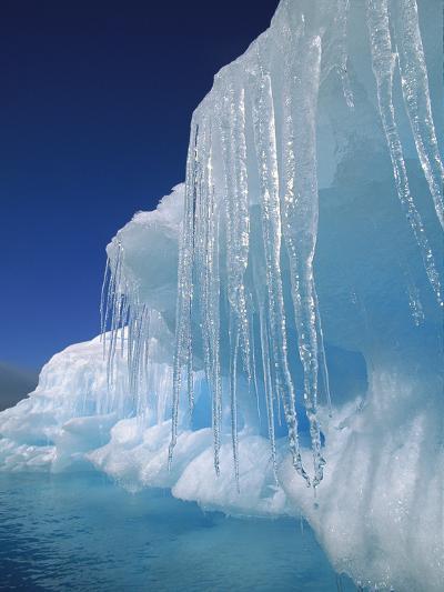 Icicles Hanging from Iceberg, Petermann Island, Antarctic Peninsula, Antarctica-Colin Monteath/Minden Pictures-Photographic Print