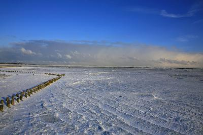 Icy Winter Morning in the Mudflat in Front of Keitum (Village) on the Island of Sylt-Uwe Steffens-Photographic Print