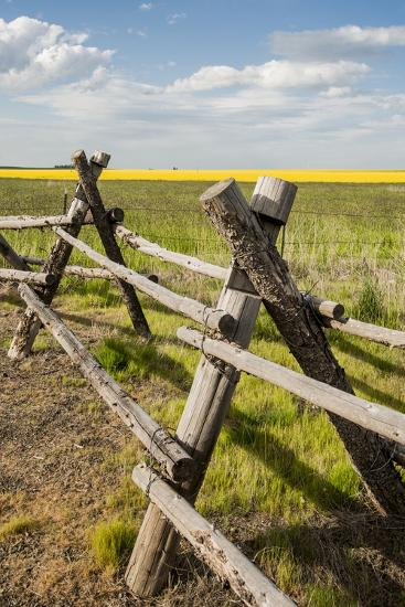 Idaho, Camas Prairie, Wooden Fence at Tolo Lake Access Area-Alison Jones-Photographic Print