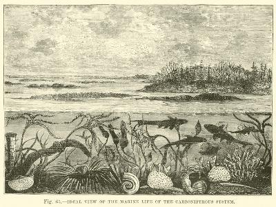 Ideal View of the Marine Life of the Carboniferous System--Giclee Print