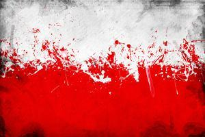 Poland Flag by igor stevanovic