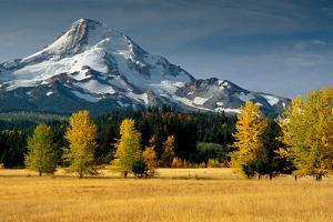 Mt. Hood IX by Ike Leahy