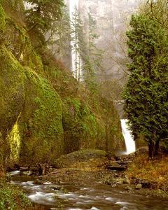Multnomah Falls Creek Side by Ike Leahy