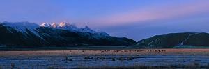 Winter Sunrise by Ike Leahy