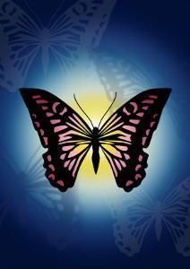 Butterfly in Blue Shadow by Ikuko Kowada