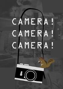 Camera Gray by Ikuko Kowada