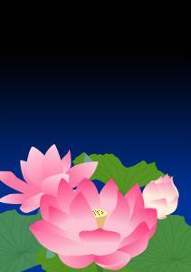 Lotus at Dark Night by Ikuko Kowada
