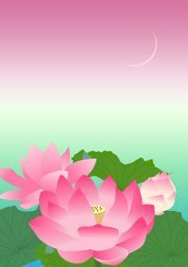 Lotus at Night by Ikuko Kowada