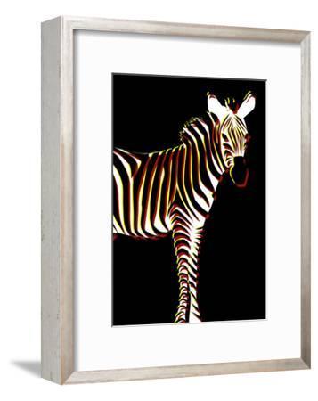 Zebra in Black Vertical
