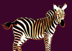 Zebra in Purple Horizontal by Ikuko Kowada