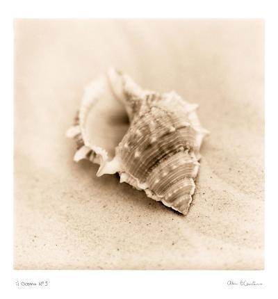 Il Oceano III-Alan Blaustein-Art Print