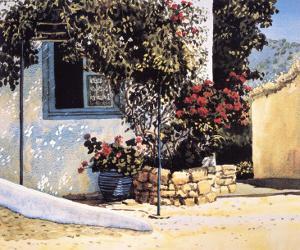 Jasmine and Geraniums by Ilana Richardson