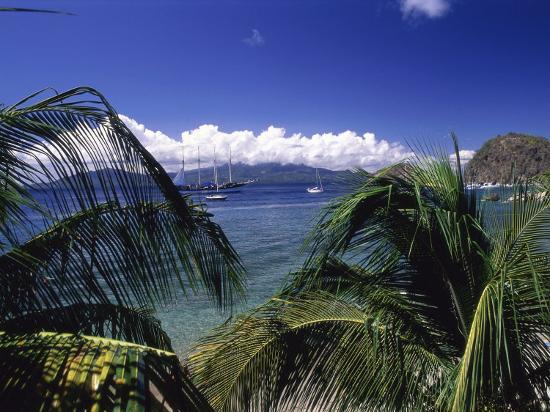 Iles Des Saintes, Guadeloupe--Photographic Print