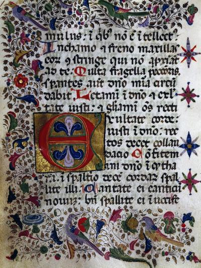 Illuminated Page from Book of Hours in Popular Sicilian Script, Manuscript, Italy--Giclee Print