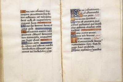Illuminated Page, from the Book of Hours, According to the Use of Poitiers--Giclee Print