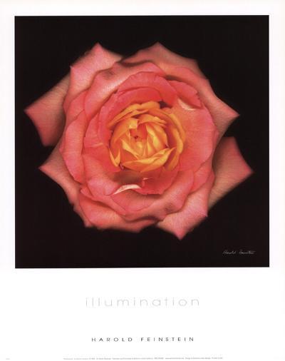 Illumination-Harold Feinstein-Art Print