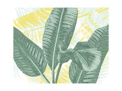 https://imgc.artprintimages.com/img/print/illustrated-palms-ii_u-l-q12zn0f0.jpg?p=0