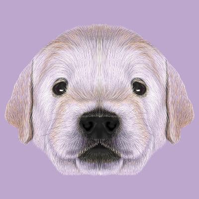 Illustrated Portrait of Golden Retriever Puppy-ant_art19-Art Print
