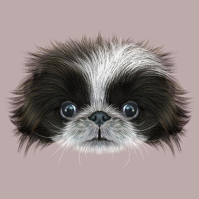 Illustrated Portrait of Pekingese Dog-ant_art19-Art Print