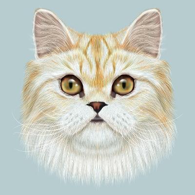 Illustrated Portrait of Persian Cat.-ant_art19-Art Print