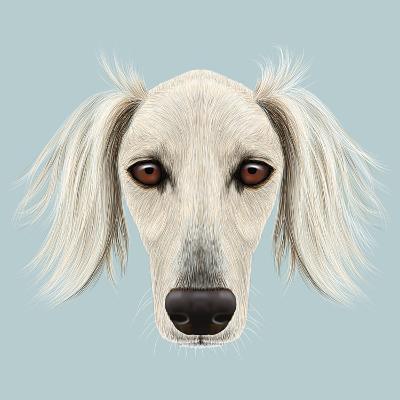 Illustrated Portrait of Saluki Dog-ant_art19-Art Print