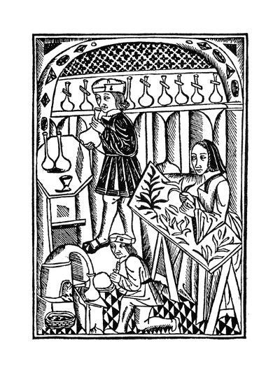 Illustration from Le Proprietaire Des Choses, 1500--Giclee Print