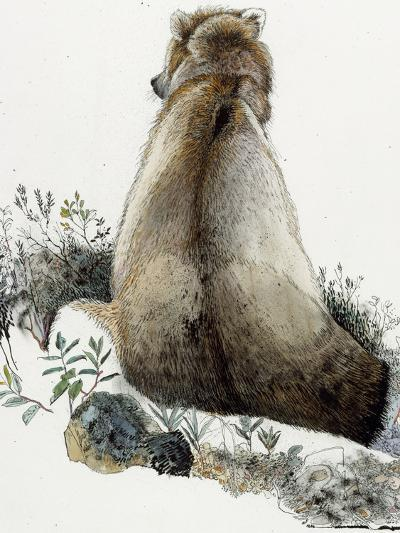 Illustration of a Grizzly Bear in the Arctic National Wildlife Refuge-Jack Unruh-Giclee Print