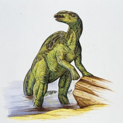 Illustration of Anatotitan by Tree Log--Giclee Print