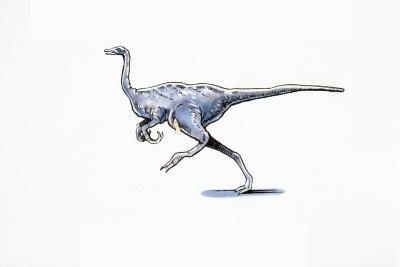 Illustration of Archaeornithomimus--Giclee Print