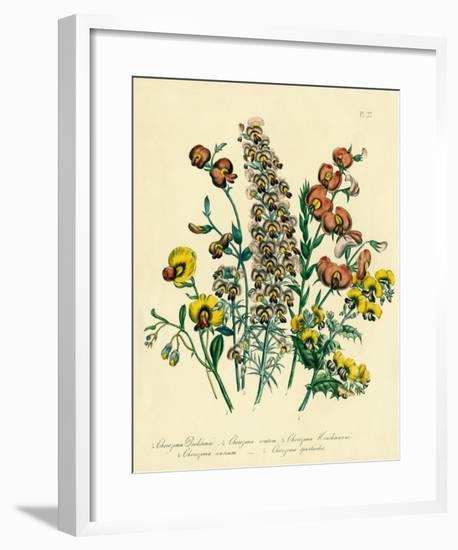 Illustration of Colorful Flowers-Bettmann-Framed Giclee Print
