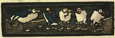 Illustration of English Tales Folk Tales and Ballads, Five Sea Gulls--Giclee Print