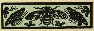https://imgc.artprintimages.com/img/print/illustration-of-english-tales-folk-tales-and-ballads-insects_u-l-pvgla30.jpg?p=0