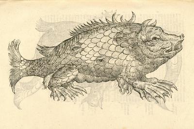 "Illustration of ""Monstrosus Sur Marinus"" from Aldrovandi's 'History of Monsters' , 1642--Giclee Print"
