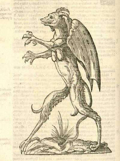 "Illustration of ""Monstrum Alatum--Giclee Print"