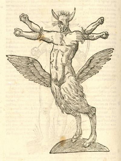 "Illustration of ""Monstrum Tetrachiron Alatum Capite Humano Aurito""--Giclee Print"