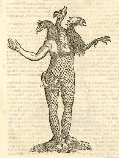 "Illustration of ""Monstrum Triceps Capite Vulpis--Giclee Print"