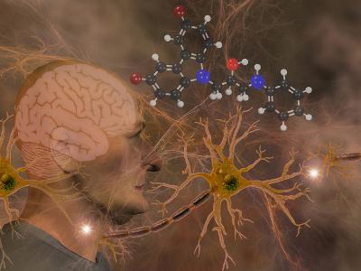 Illustration of P7C3 and Alzheimer's Disease-Carol & Mike Werner-Photographic Print