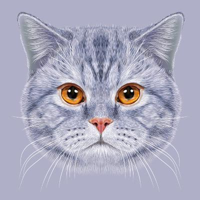 Illustration of Portrait British Short Hair Cat. Cute Grey Tabby Domestic Cat with Orange Eyes.-ant_art19-Art Print