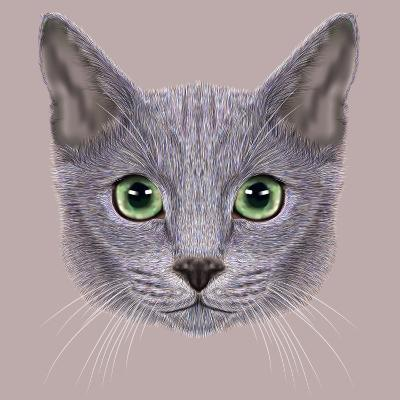 Illustration of Portrait of Russian Blue Cat. Cute Domestic Cat with Green Eyes.-ant_art19-Art Print