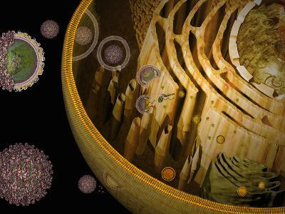 Illustration of Replication of Flavivirus in Host Cell-Carol & Mike Werner-Photographic Print