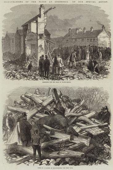 Illustrations of the Flood at Sheffield--Giclee Print