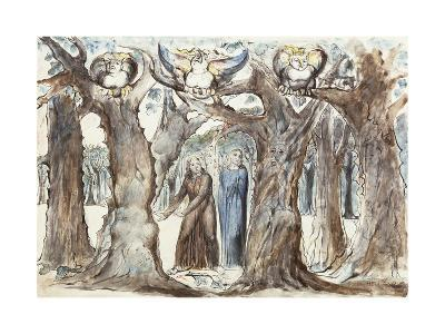 Illustrations to Dante's Divine Comedy, the Wood of the Self-Murderers-William Blake-Giclee Print