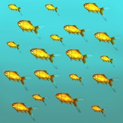 Illustrative Background of Many Red Freshwater Fish-Valentina Photos-Photographic Print