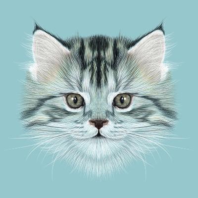 Illustrative Portrait of Domestic Kitten. Cute Grey Tabby Kitten.-ant_art19-Art Print