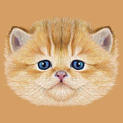 Illustrative Portrait of Domestic Kitten. Cute Peach Kitten with Blue Eyes.-ant_art19-Art Print