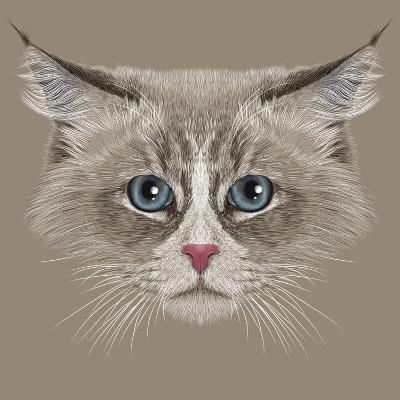 Illustrative Portrait of Siberian Cat. Cute Domestic Colour Point Cat with Blue Eyes.-ant_art19-Art Print