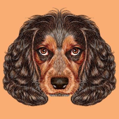 Illustrative Portrait of Spaniel Dog. Cute Young Russian Hunting Spaniel.-ant_art19-Art Print