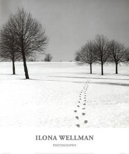 Winter Footsteps by Ilona Wellmann